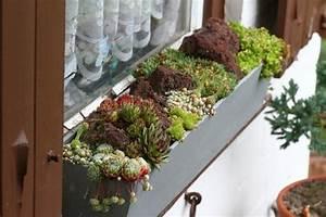Fensterbank Außen Dekorieren : wie balkonk sten sichern mein sch ner garten forum ~ Eleganceandgraceweddings.com Haus und Dekorationen