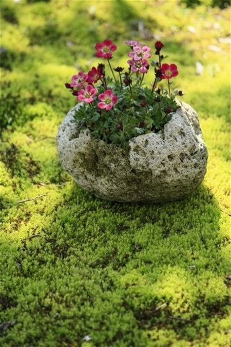 payer les pots casses 1000 images about great gardens ideas on