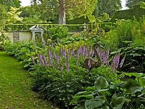 Pflanzen Im Schatten : vorgarten im schatten diese pflanzen gedeihen absonnig ~ Orissabook.com Haus und Dekorationen