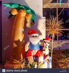 Palm Tree Christmas Lights Stock Photos & Palm Tree ...