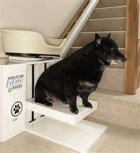Elevator Chair Lift by World S First Dogs Stairlift For Obese Slackers Extravaganzi