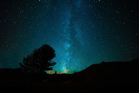 free images forest star milky way cosmos texture
