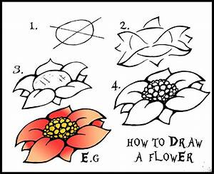 DARYL HOBSON ARTWORK: How To Draw A Flower: Step By Step Guide