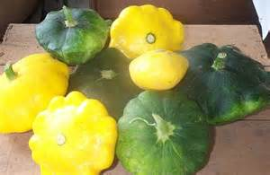 Different Squash Types Vegetable