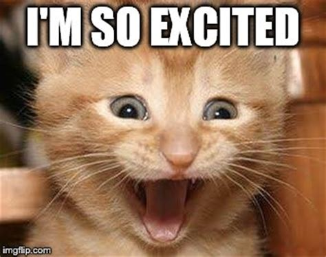 Excited Meme Top 25 Excited Meme Quotes And Humor