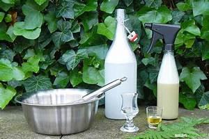 Mittel Gegen Rost : spritzmittel gegen ackerschachtelhalm bio pflanzenspray f ~ Michelbontemps.com Haus und Dekorationen