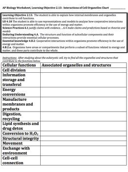 ap biology worksheet learning objective  organelle