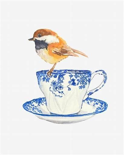 Teacup Bird Pngtree Watercolor