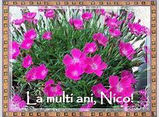 Felicitari virtuale de Sfantul Nicolae Timp liber