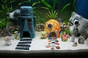 Idee Decoration Aquarium : d co pour votre aquarium 17 id es laissez vous inspirer ~ Melissatoandfro.com Idées de Décoration