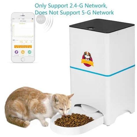 pet feeder for sale 50 best automatic cat feeders food dispensers 2019 pet
