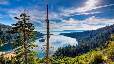Lake Tahoe, Kalifornien, USA, Ansicht von oben, Wald