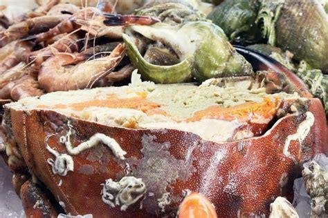 cuisiner un tourteau tourteau ou araignée apprenez à mieux les connaître
