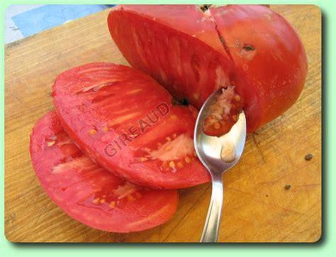 comment cuisiner du coeur de boeuf comment récolter les graines de tomates les dossiers