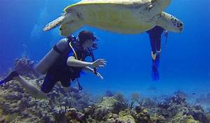De mooiste duik... Mooiste Cenotes Cancun