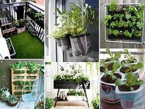 Vertikaler Garten Balkon : balkon gestalten leicht gemacht hinweise und praktische tipps ~ Frokenaadalensverden.com Haus und Dekorationen