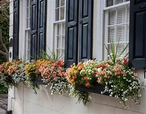 Blumenkästen Bepflanzen Ideen : wie bepflanze ich meine balkonk sten richtig 19 ideen und beispiele ~ Eleganceandgraceweddings.com Haus und Dekorationen