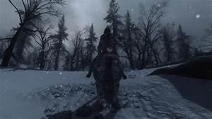 Winter, Forest, At, Skyrim, Nexus