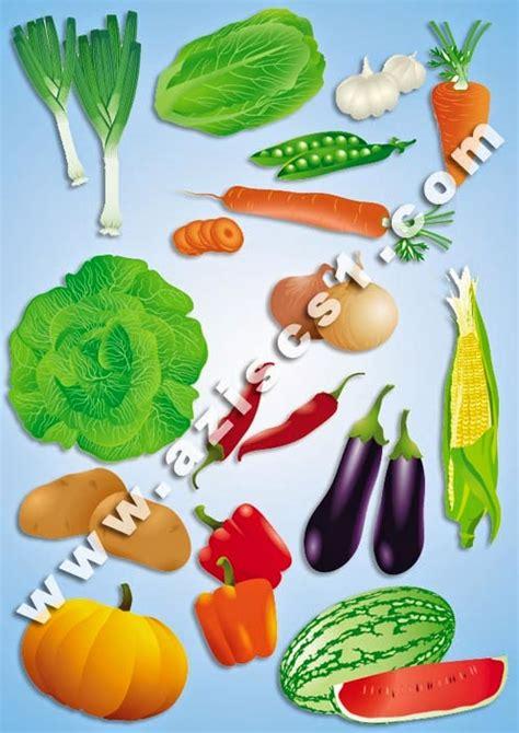 kumpulan vektor sayur sayuran eps blog azis grafis