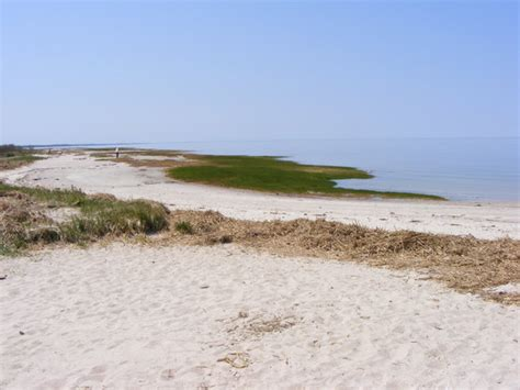 Area Beach  Picture Of West Yarmouth, Cape Cod Tripadvisor