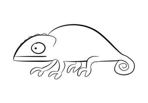 Chameleon Coloring Page Democraciaejustica