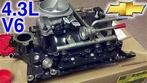 Marine Intake Swap  U0026 Rebuild  U00d7 Chevy 4 3l V6 Zr2  Timelapse