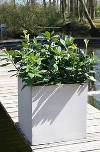 Www Blumenkübel De : pflanzk bel blumenk bel block 60x60x60cm aus fiberglas beton design ~ Sanjose-hotels-ca.com Haus und Dekorationen