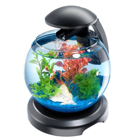 d 233 coration aquarium sans poisson