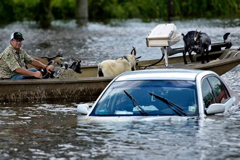 Image result for flooding pictures on getty images