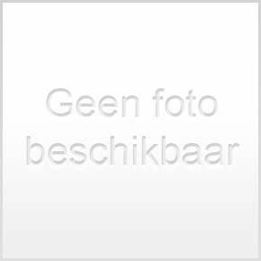 Poster - Shop voor Poster bij www.twenga.nl  Larynx Throat Disorders