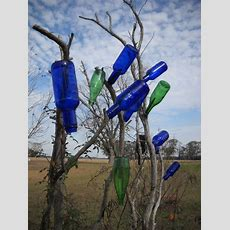Secrets Of A Seed Scatterer Another Spin On The Bottle Tree