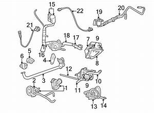 Chrysler Town  U0026 Country Evaporative Emissions System Lines