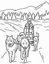Coloring Sled Dog Dogs Animal Puppy Sheets sketch template