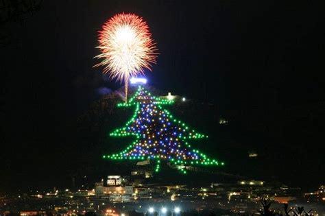 gubbios enormous christmas tree  mount ingino amusing