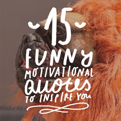 funny motivational quotes  inspire  bright drops