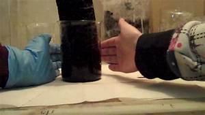 Dehydration of Sugar with Sulfuric Acid - YouTube