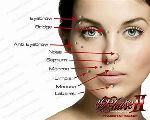 Face piercing diagram - Google images | Piercings ...