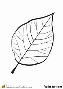 Feuilles D Automne à Imprimer : coloriage feuille de noyer en automne ~ Nature-et-papiers.com Idées de Décoration