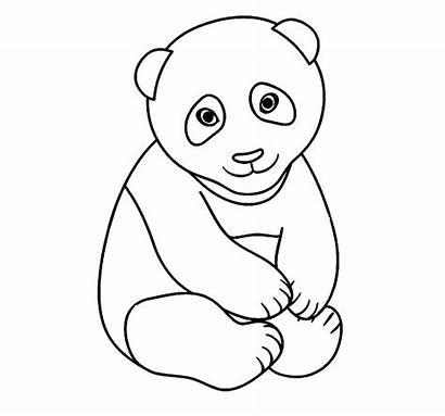 Panda Coloring Printable Various Adults Cool2bkids