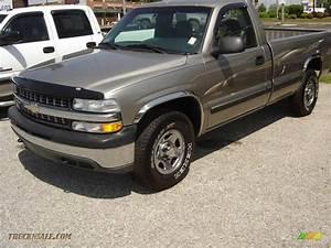 2000 Chevrolet Silverado 1500 Ls Regular Cab 4x4 In Light