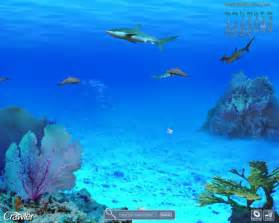 Marines Aquariums Screensavers Free Download