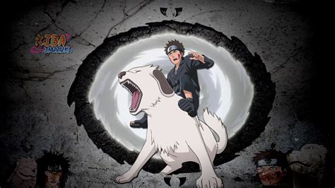 Kiba Anime Wallpaper - kiba inuzuka wallpaper 59 images