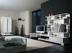 Meuble De Rangement Salon : placard rangement astuce et solution pour le rangement ~ Dailycaller-alerts.com Idées de Décoration