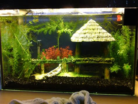 50l fait maison 1 232 re aquarium
