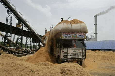 biomass power station  paper mill men unload rice