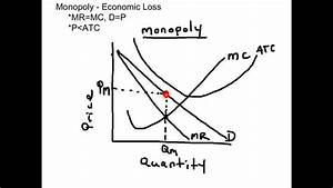 Monopoly Economic Loss Graph