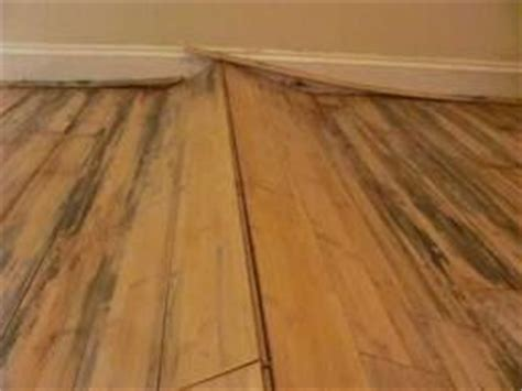 are you dealing with cupped hardwood floors
