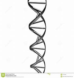 Black Dna Abstract Royalty Free Stock Image - Image: 15129466