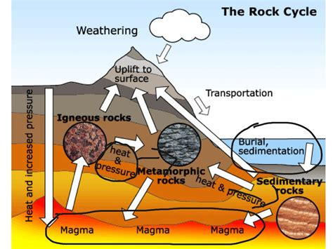 Diagram Of Rock by Rock Cycle Science Earth Science Rocks Showme