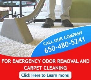 Carpet Cleaning Redwood City, Ca  6504805241  Steam Clean. Google Virus Removal Tool Pest Control Tucson. Pharmacy Technician Letter Ce. Philips Frx Defibrillator Fleas Bites On Dogs. Retroactive Health Insurance. New Product Development Jobs New York Llcs. Tampa Private Investigator Online Bba Degree. Onboarding Process Flow Chart. Radiology Programs In Virginia